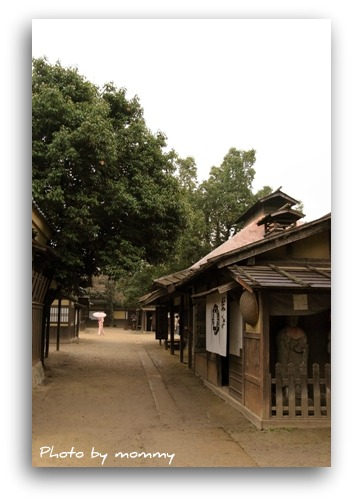 11/5 京都_a0169912_23194748.jpg