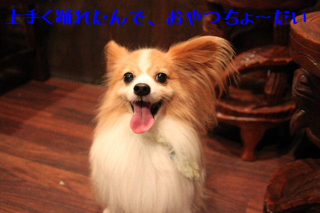 b0130018_1015738.jpg