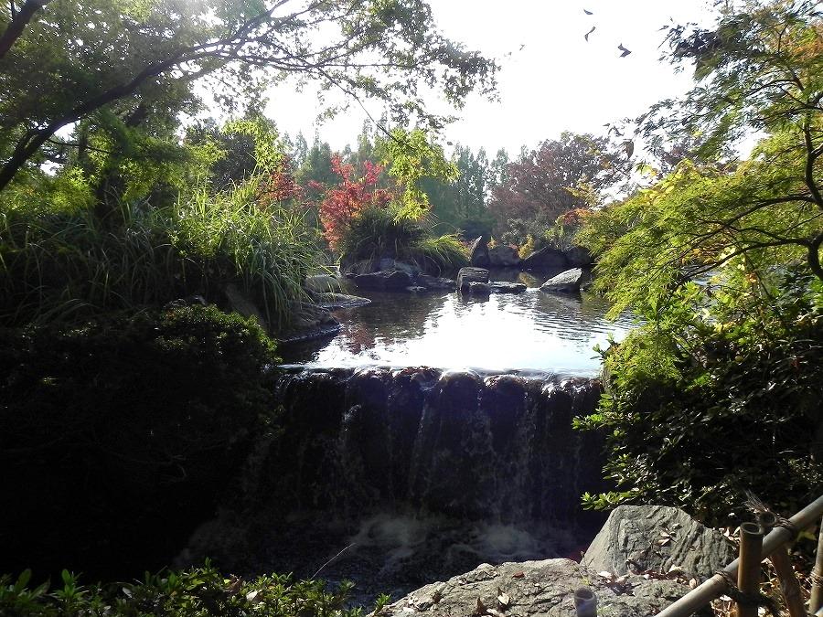 円山公園②_c0187781_9281581.jpg