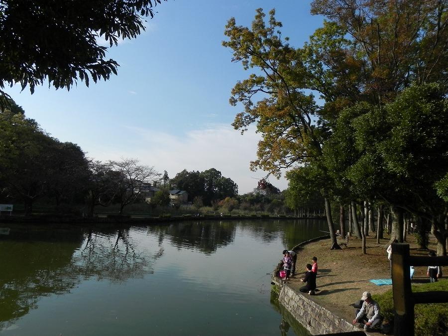 円山公園②_c0187781_9335973.jpg
