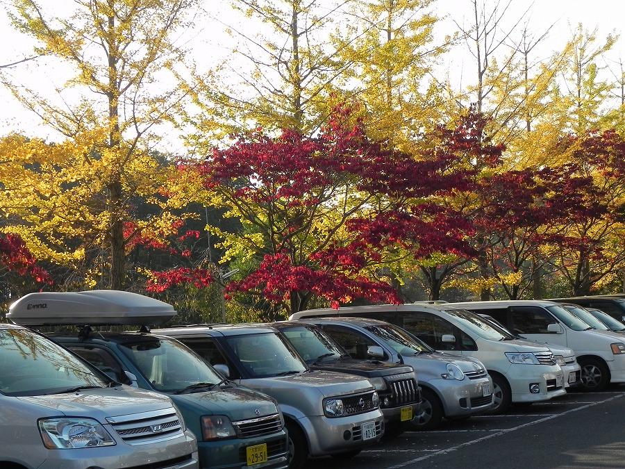 円山公園②_c0187781_934242.jpg