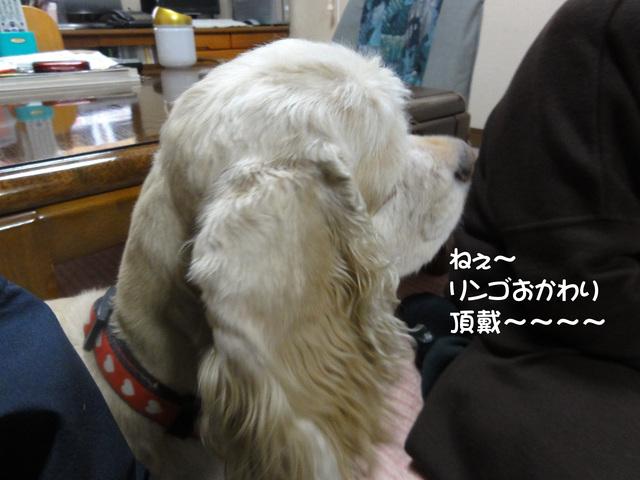f0218182_1771179.jpg