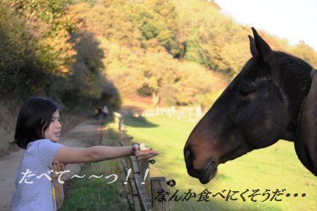 作り置きおかず☆もやしのピリ辛桜エビオイル和え_d0104926_3194236.jpg