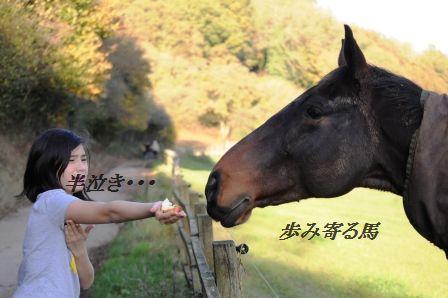 作り置きおかず☆もやしのピリ辛桜エビオイル和え_d0104926_319593.jpg