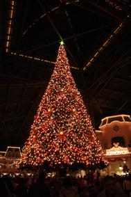 12月イベント参加します!_d0235235_2394811.jpg