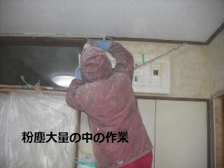 7日目の作業_f0031037_207944.jpg