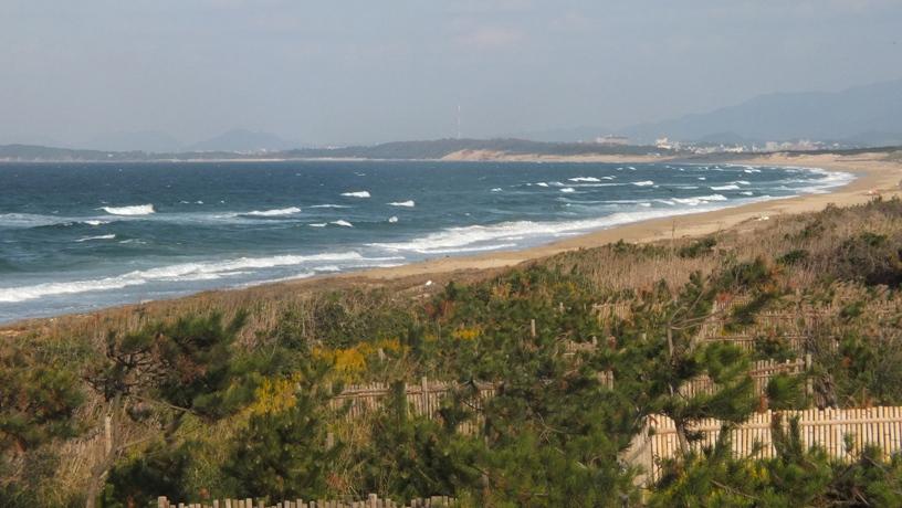海の中道海浜公園2 玄界灘_b0214473_15103166.jpg