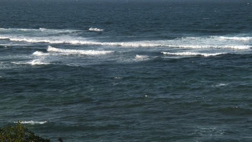 海の中道海浜公園2 玄界灘_b0214473_15213029.jpg