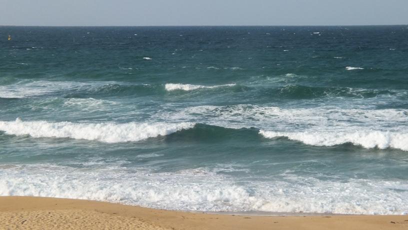 海の中道海浜公園2 玄界灘_b0214473_15223392.jpg