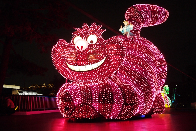 Tokyo Disneyland ~エレクトリカルパレード~_a0127090_23232827.jpg