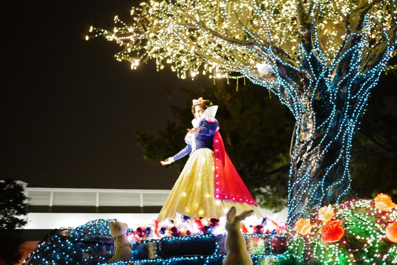Tokyo Disneyland ~エレクトリカルパレード~_a0127090_23233630.jpg