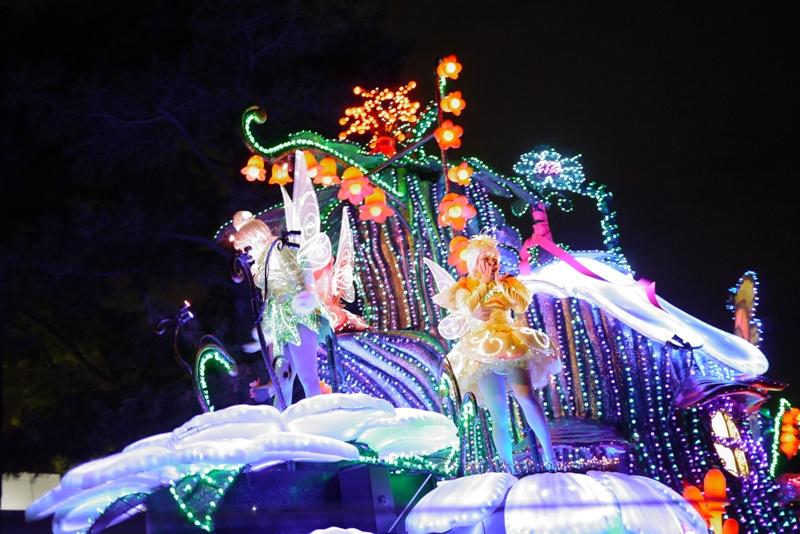 Tokyo Disneyland ~エレクトリカルパレード~_a0127090_23273086.jpg
