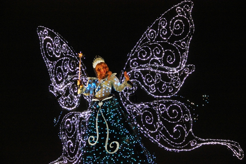 Tokyo Disneyland ~エレクトリカルパレード~ ※オット撮影編_a0127090_23402317.jpg