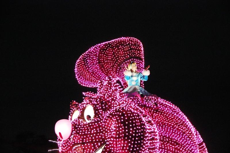 Tokyo Disneyland ~エレクトリカルパレード~ ※オット撮影編_a0127090_23421013.jpg
