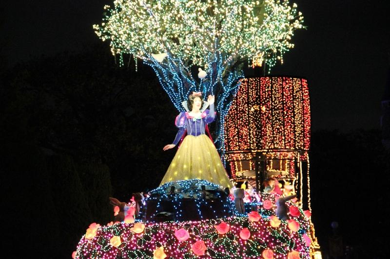 Tokyo Disneyland ~エレクトリカルパレード~ ※オット撮影編_a0127090_23423067.jpg