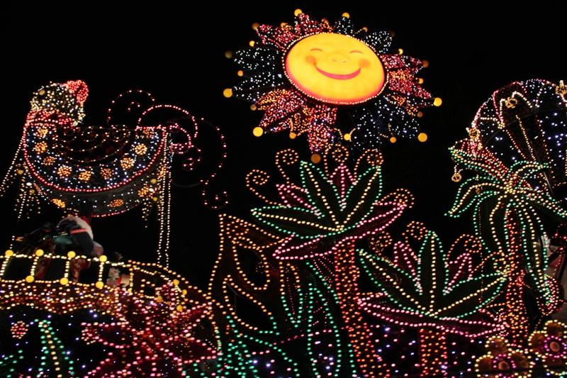 Tokyo Disneyland ~エレクトリカルパレード~ ※オット撮影編_a0127090_23461078.jpg