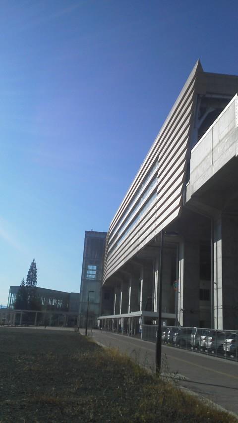 MY FIRST KOENJI!〜はじめての高円寺〜           2011・11・11_b0209890_19491755.jpg