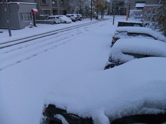 雪が積もりました。_c0226202_631574.jpg