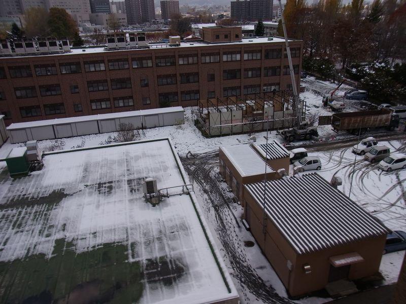 いきなりの本格的降雪_c0025115_19293956.jpg
