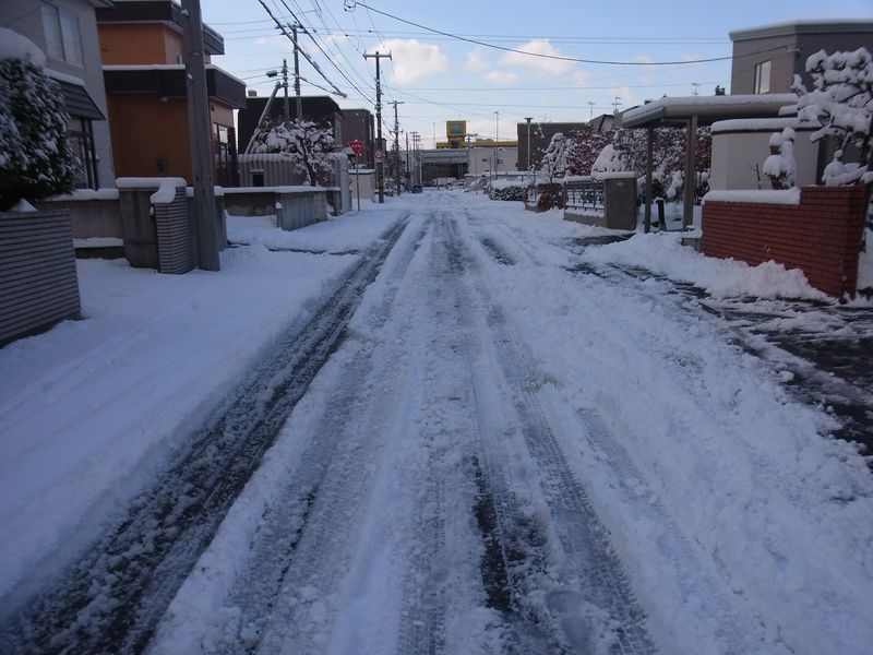 いきなりの本格的降雪_c0025115_19295964.jpg