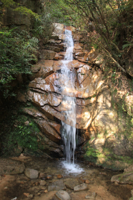六甲山ロックガーデン・東おたふく山から黒岩西尾根を登る_d0055236_2133613.jpg