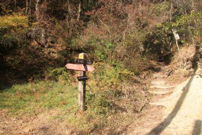 六甲山ロックガーデン・東おたふく山から黒岩西尾根を登る_d0055236_2245557.jpg