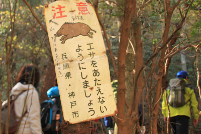六甲山ロックガーデン・東おたふく山から黒岩西尾根を登る_d0055236_22475654.jpg