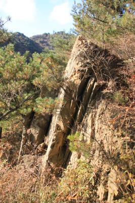 六甲山ロックガーデン・東おたふく山から黒岩西尾根を登る_d0055236_22532296.jpg