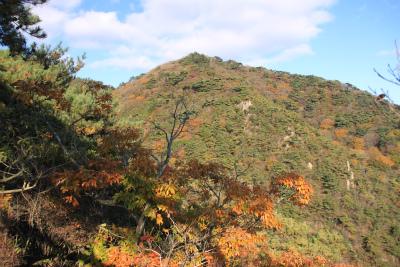 六甲山ロックガーデン・東おたふく山から黒岩西尾根を登る_d0055236_22534144.jpg