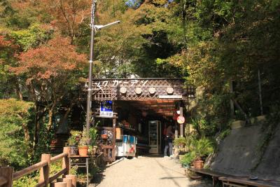 六甲山ロックガーデン・東おたふく山から黒岩西尾根を登る_d0055236_23451967.jpg