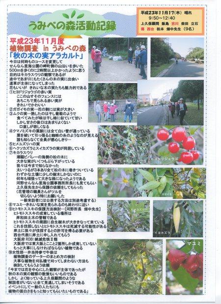 H23年11月度植物調査_c0108460_1704560.jpg
