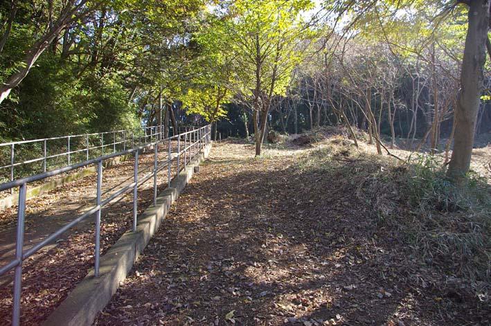 六国見山伐採ヒノキ後始末④紅葉とエゴノキの植樹準備OK_c0014967_84645.jpg