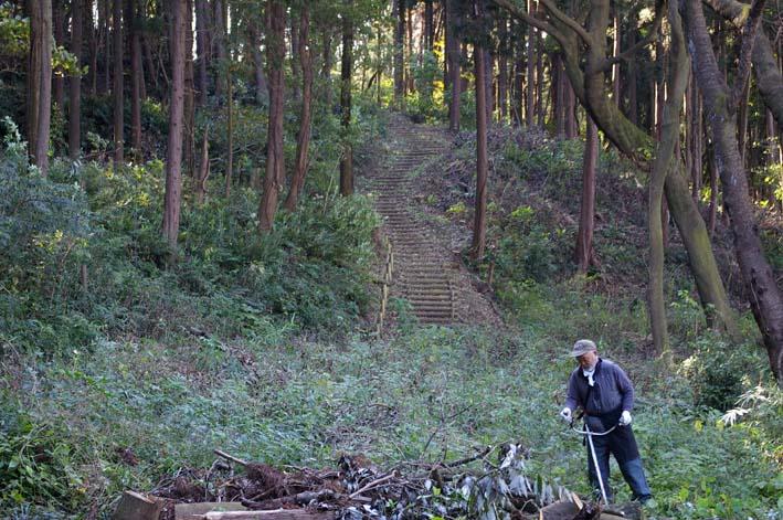 六国見山伐採ヒノキ後始末④紅葉とエゴノキの植樹準備OK_c0014967_9194357.jpg