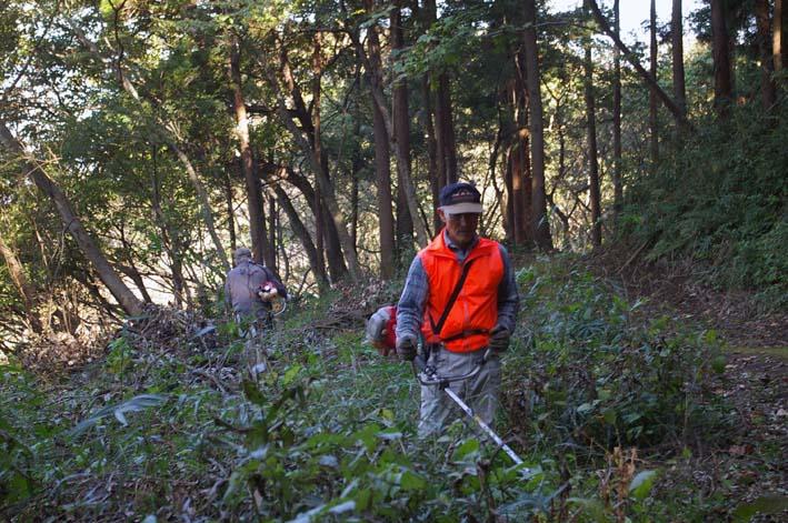 六国見山伐採ヒノキ後始末④紅葉とエゴノキの植樹準備OK_c0014967_9202116.jpg