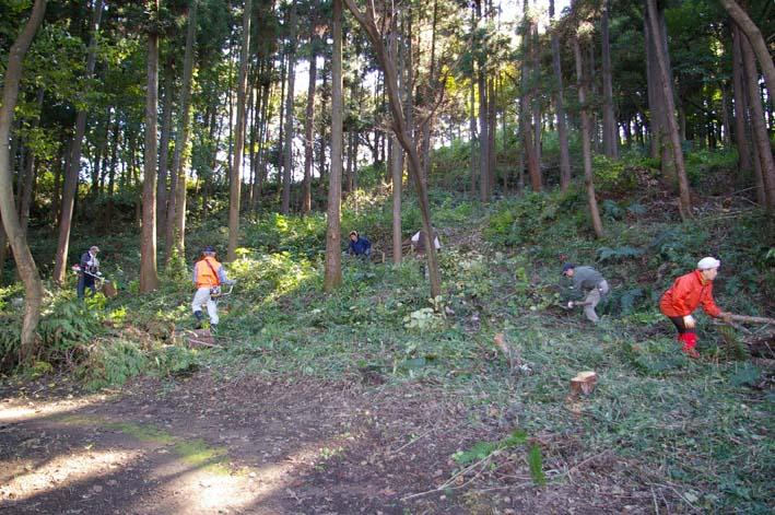 六国見山伐採ヒノキ後始末④紅葉とエゴノキの植樹準備OK_c0014967_927795.jpg
