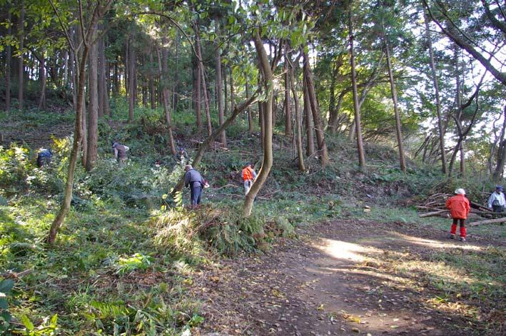 六国見山伐採ヒノキ後始末④紅葉とエゴノキの植樹準備OK_c0014967_931469.jpg