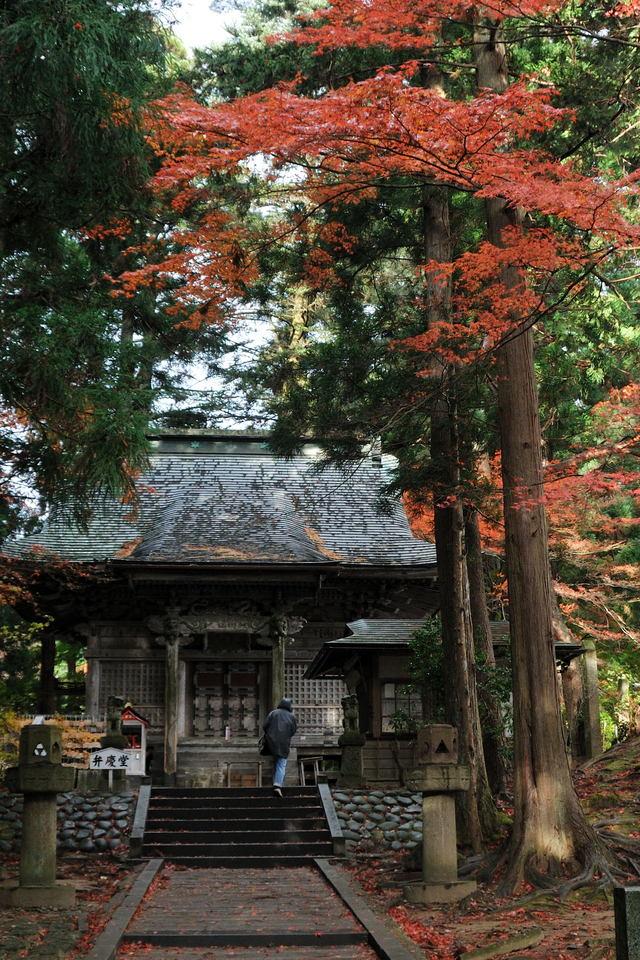 世界遺産 金色堂と経堂_b0223668_10101692.jpg