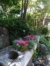 『花遊庭』さん_b0142989_19194927.jpg