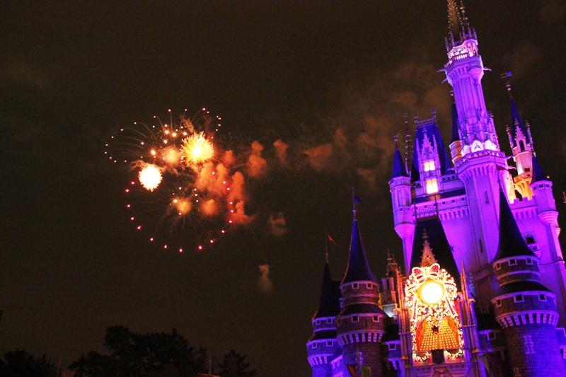 Tokyo Disneyland ~スターブライトクリスマス~_a0127090_20243780.jpg