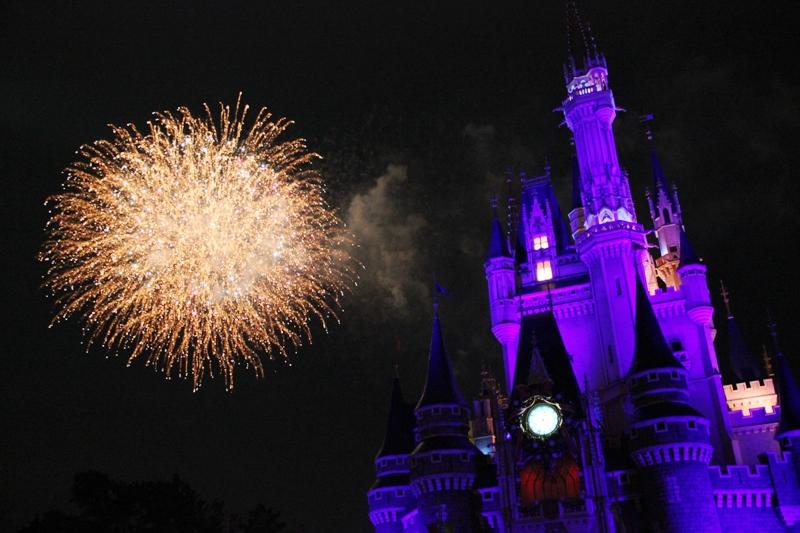Tokyo Disneyland ~スターブライトクリスマス~_a0127090_20261768.jpg