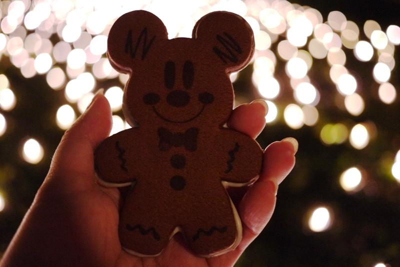 Tokyo Disneyland ~スターブライトクリスマス~_a0127090_20291111.jpg
