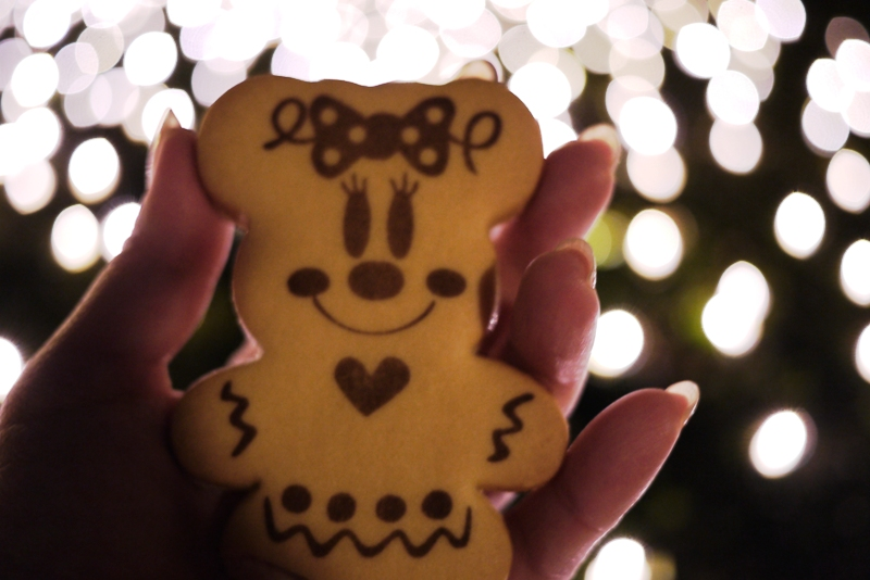 Tokyo Disneyland ~スターブライトクリスマス~_a0127090_20291859.jpg