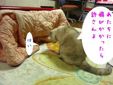 b0151748_123873.jpg