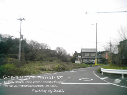 DCFC0050.jpg