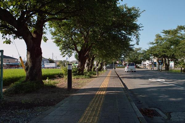 SDIM0181.jpg