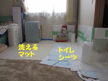 b0193480_16161868.jpg