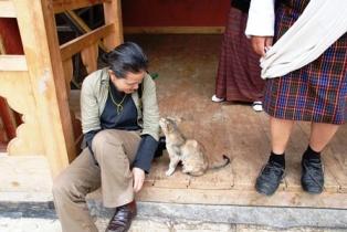 ブータンのネコに話しかけられる_b0053082_191759.jpg