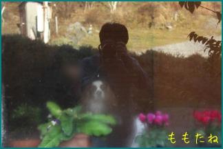 d0044986_23323571.jpg