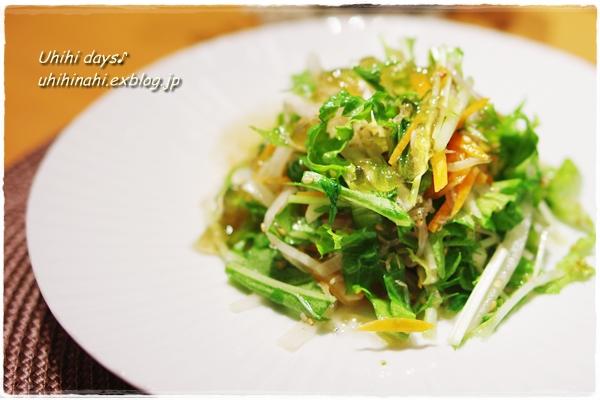 水菜と大根のパリパリサラダ_f0179404_16234721.jpg