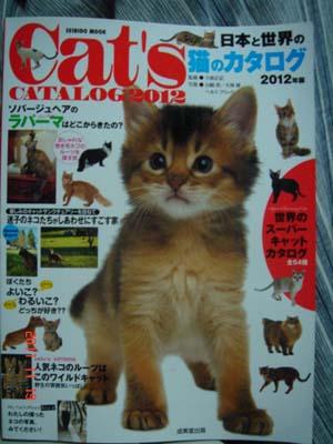 日本と世界の猫カタログ2012年_e0033609_1614534.jpg